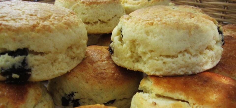 bakery5
